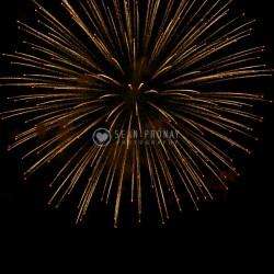 Fireworks -- single burst