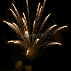 Fireworks -- pineapple leaves